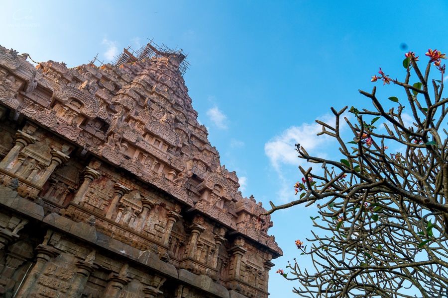 Gangaikonda Cholapuram - Amarramesh Traveller - Discover Tamilnadu - Destination wedding photographer India-15